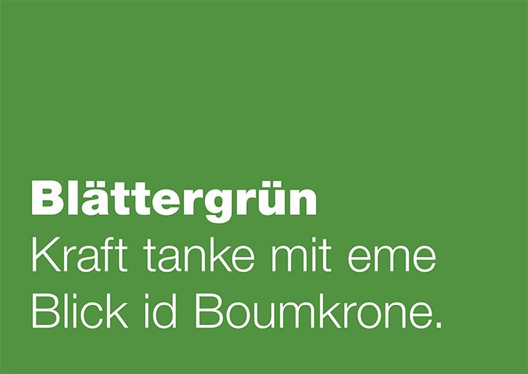 11_Farbenkarte_Blaettergruen.jpg